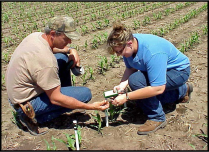 Brandy VanDeWalle, UNL Extension, shows a producer  how to read watermark sensors after installation.