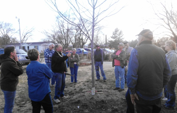 Scott Dewald explaining what to look for when considering pruning a tree.