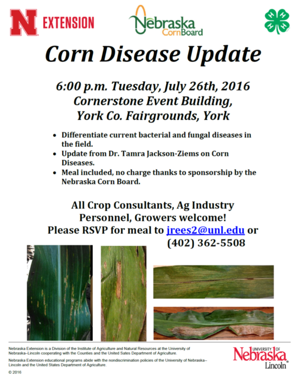 corn disease meeting