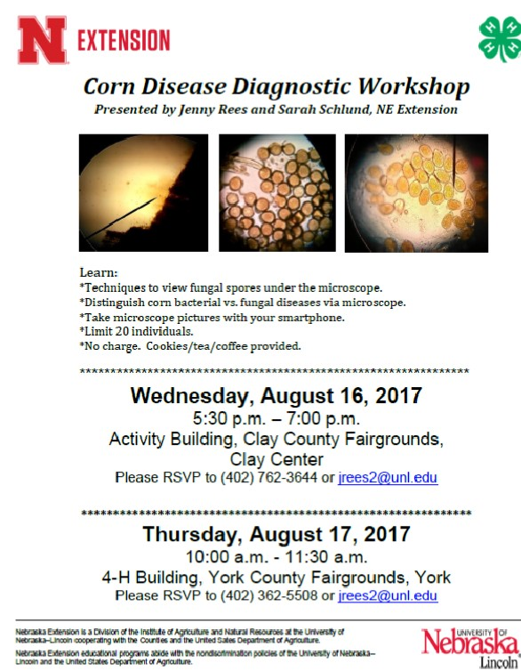 corndiseasediagnosticworkshop