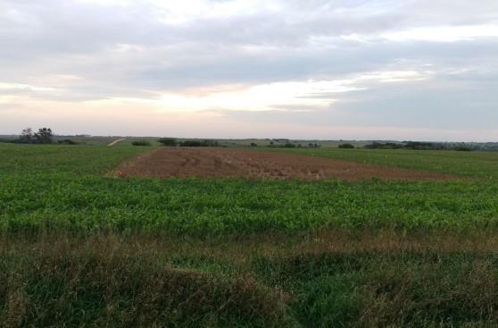 Herz field Sept. 21-2016
